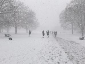 Kensington Snow Day